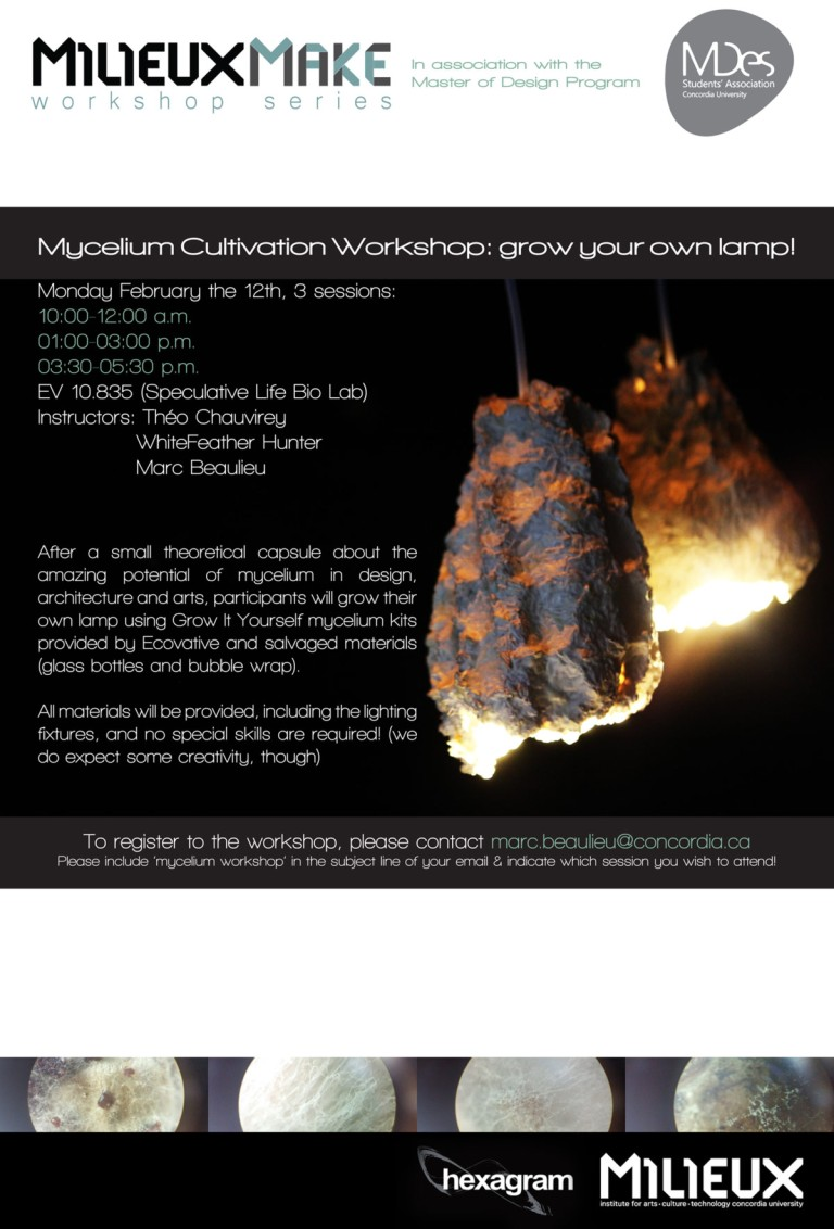 mycellium workshop