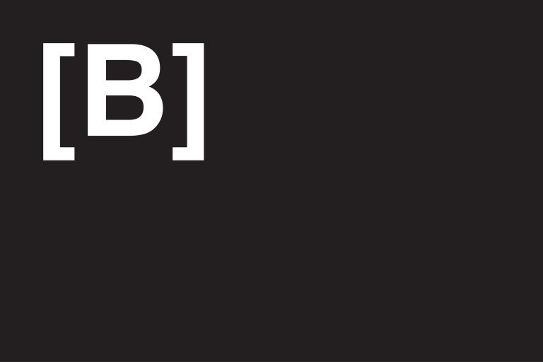 MSUB-BRIDGE Website_0